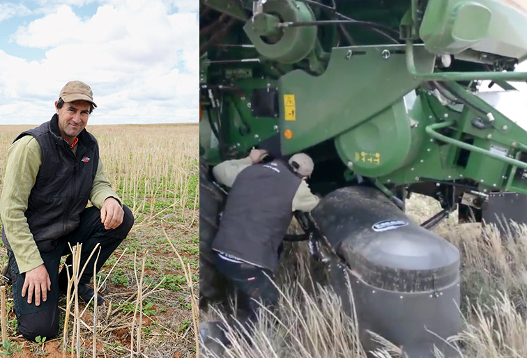 New farming methods help sort the wheat from the chaff